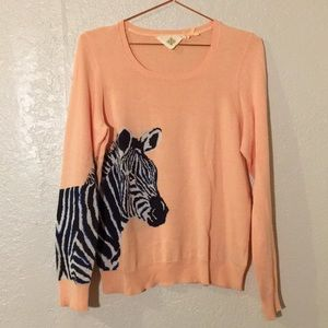 Anthropologie monogram hwr zebra sweater